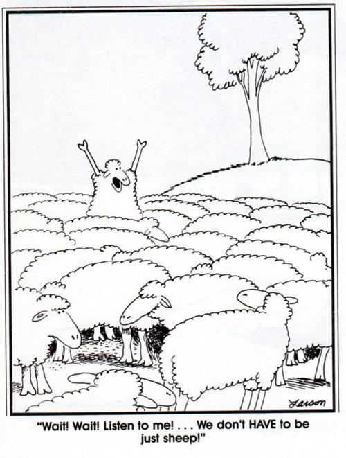 ¡Ey, esperad un momento!¡No tenemos que ser sólo ovejas!
