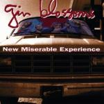 Gin_Blossoms_-_New_Miserable_Experience_(alternative_cover)