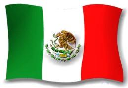 bandera mex2