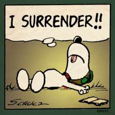 Image result for surrender